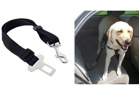 Pás bezpečnostný pre psov 4L
