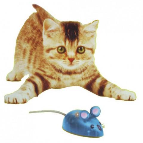 Myšou dráha Hutermann pre mačky i deti - chytanie myšky
